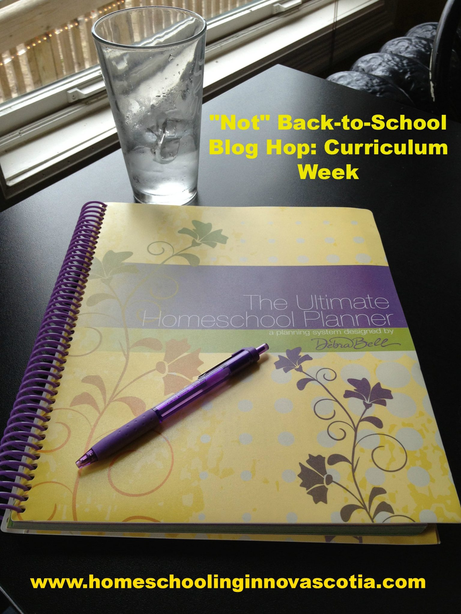 Not Back to School Blog Hop - Curriculum