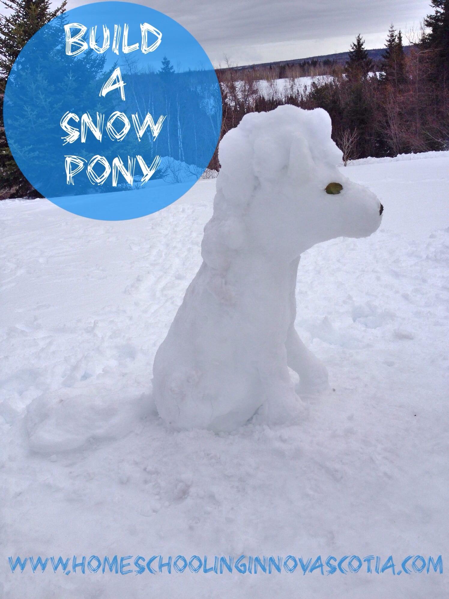build a snow pony